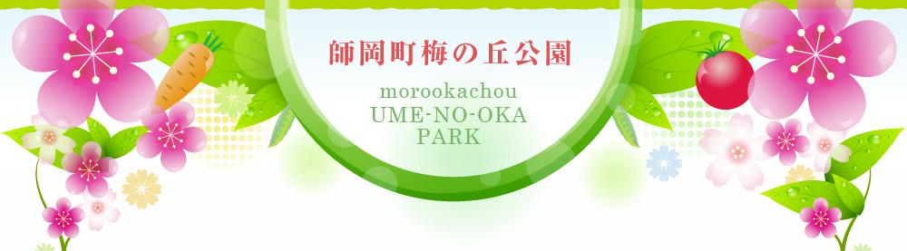 師岡町梅の丘公園
